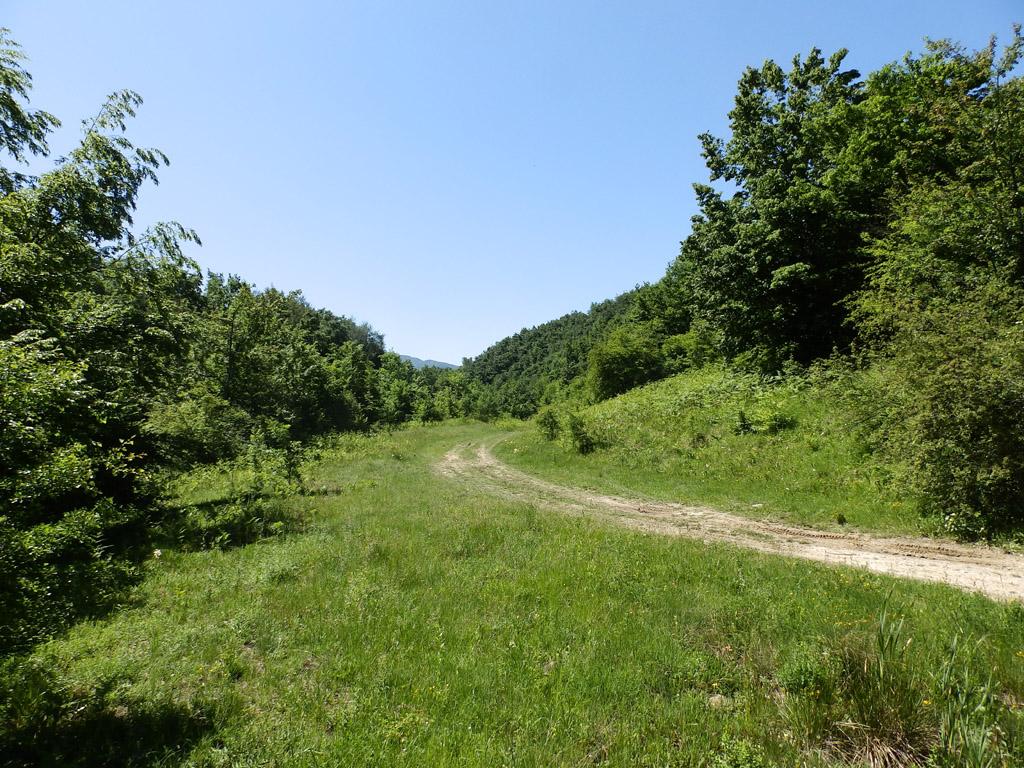 Път към хижа Чумерна